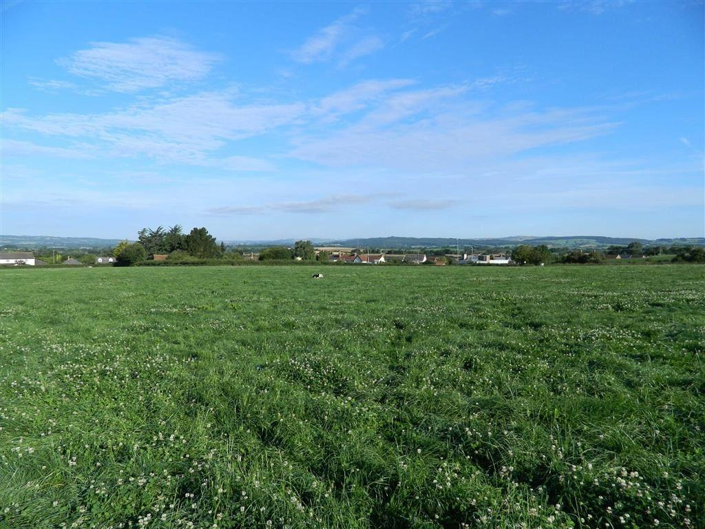 Land Commercial for sale in Whimple, Strete Ralegh, Exeter, EX5
