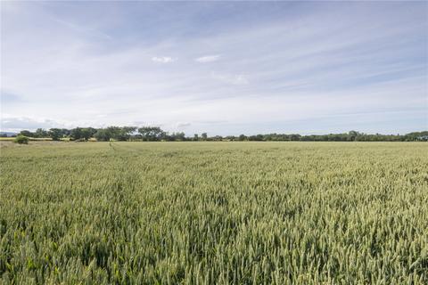 Farm for sale - Arabella, Tain, Ross-Shire