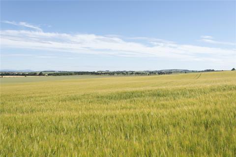 Farm for sale - Wester Rarichie Farm, Fearn, Tain, Ross-Shire