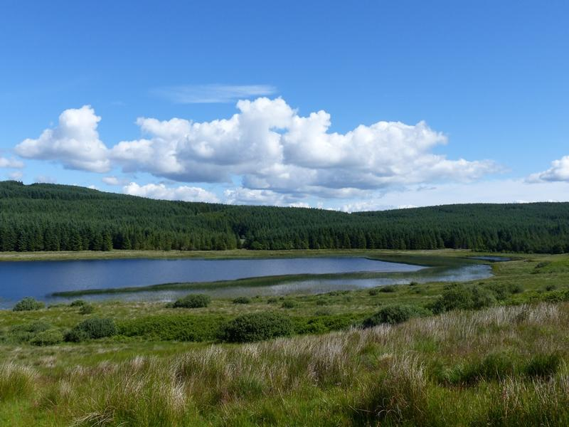 Land Commercial for sale in Achavraid Forest, Nr Tarbert, Argyll PA29