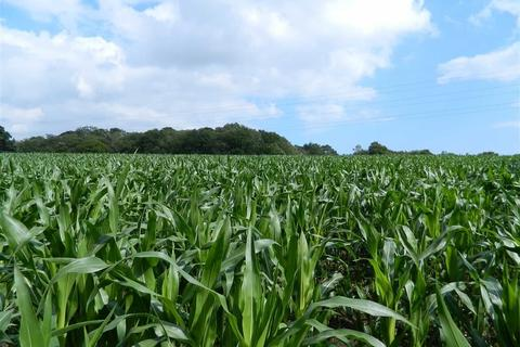 Land for sale - Exeter Road, Strete Ralegh, Exeter, EX5