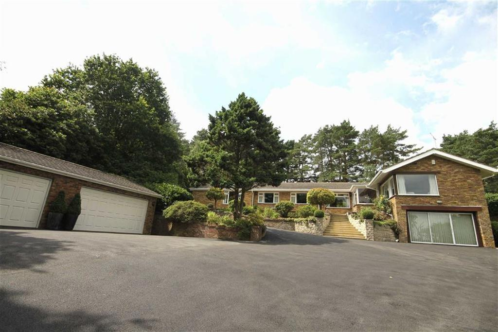 4 Bedrooms Detached House for sale in Windmill Lane, Avon Castle