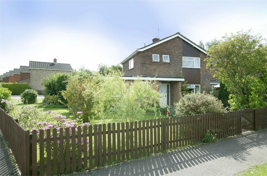 3 Bedrooms Semi Detached House for sale in Townshend Place, Shipdham, Norfolk