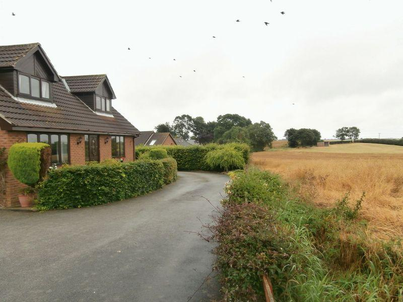 3 Bedrooms Detached Bungalow for sale in Beech Drive, Patrington