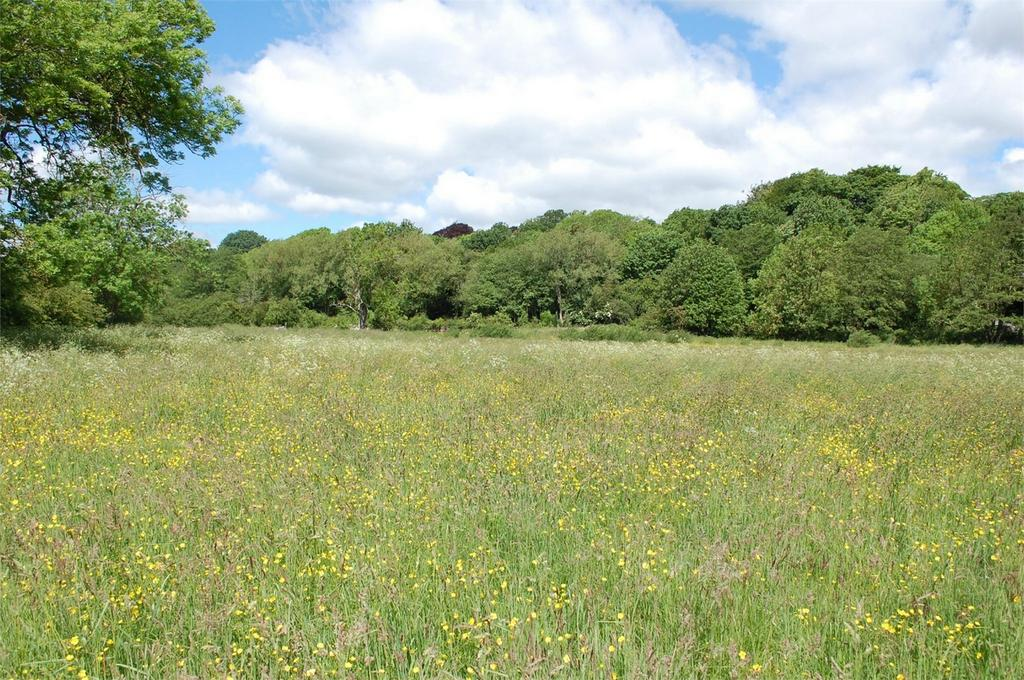 Farm Land Commercial for sale in Witton le Wear, Bishop Auckland, County Durham