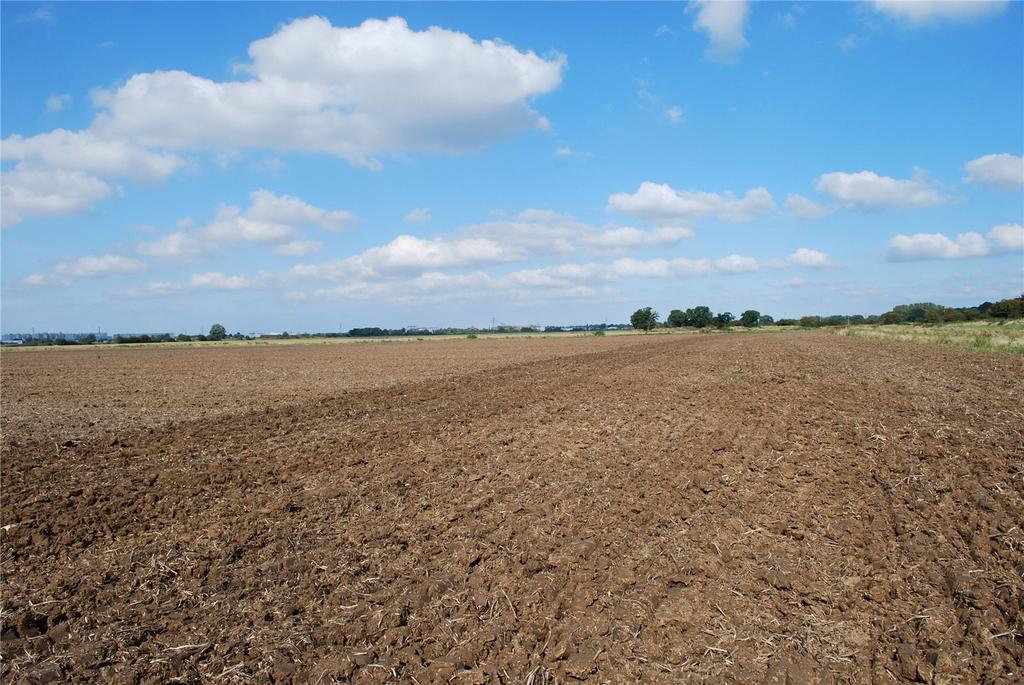 Country House Character Property for sale in Block of Commercial Arable Land, West Winch, Norfolk