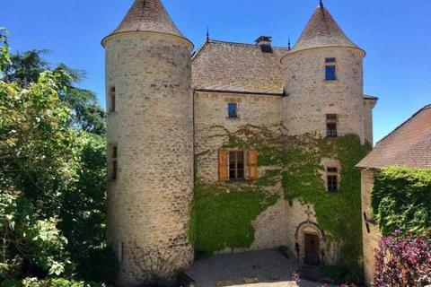 6 bedroom house  - Near Caylus, Tarn Et Garonne, South West France