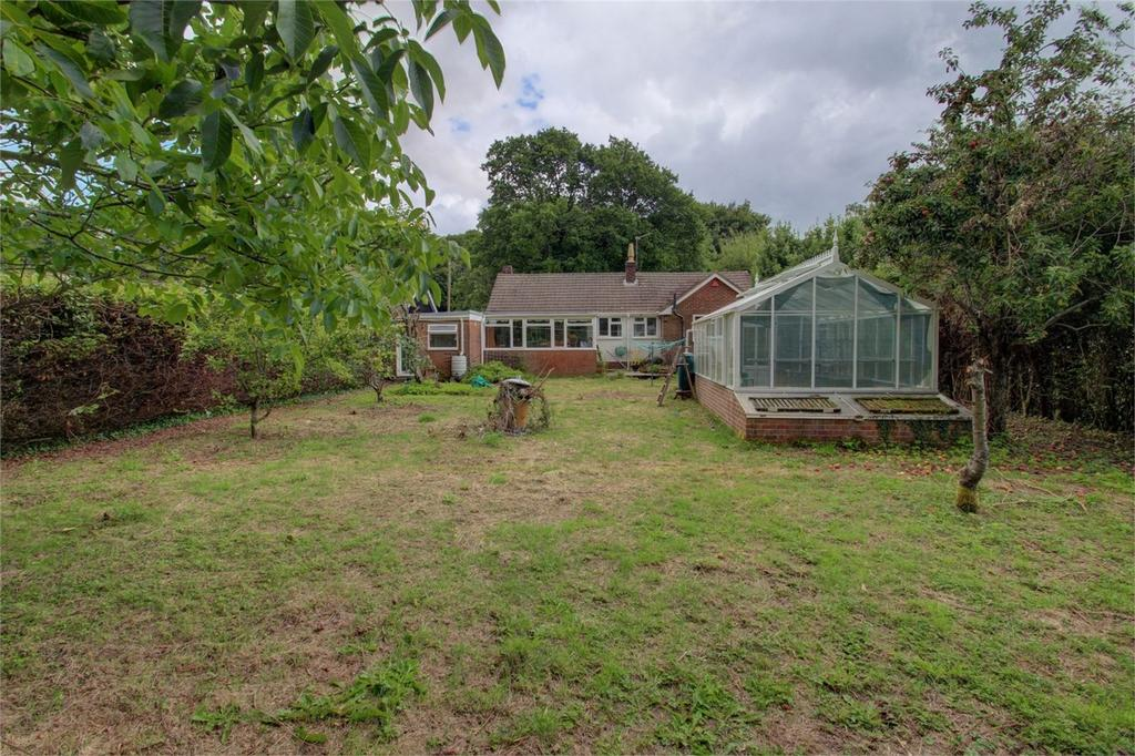 3 Bedrooms Detached Bungalow for sale in South Town Road, Medstead, Hants