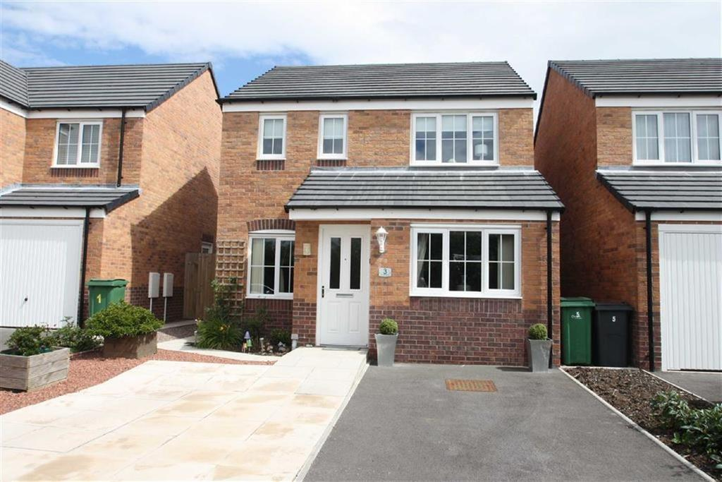 3 Bedrooms Detached House for sale in Rondel Street, Archery Fields, Shrewsbury