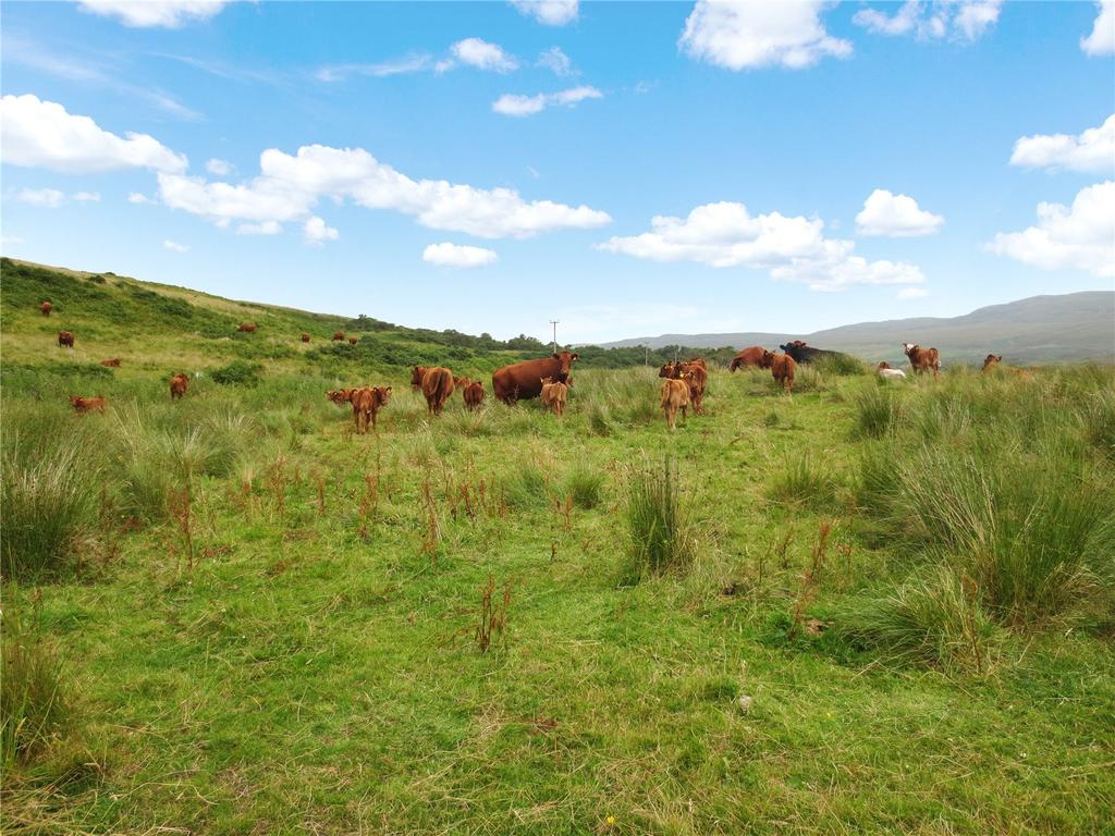 Land Commercial for sale in Croft At Syre, Strathnaver, Sutherland, KW11
