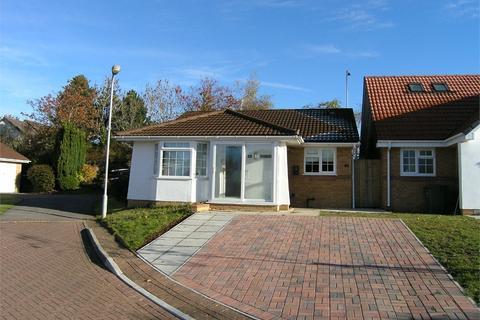 2 bedroom detached bungalow to rent - Clos Nant Y Cor, Pontprennau, Cardiff