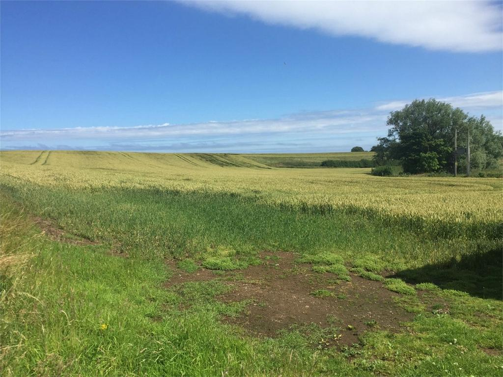 Plot Commercial for sale in Milldown, Coldingham, Scottish Borders