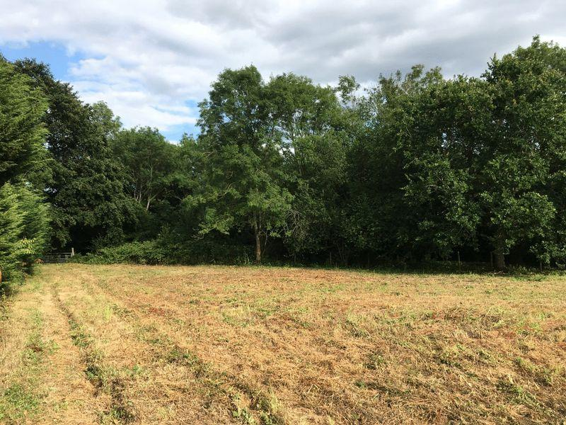Land Commercial for sale in Broad Oak, Brede, Rye