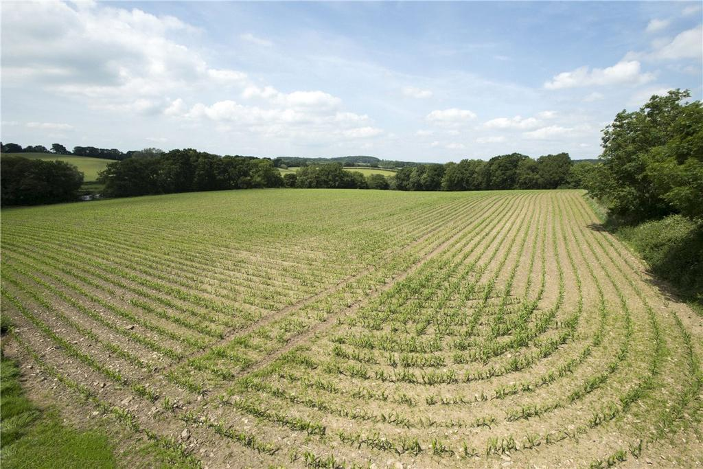 Land Commercial for sale in Church Lane, Fovant, Salisbury, Wiltshire, SP3