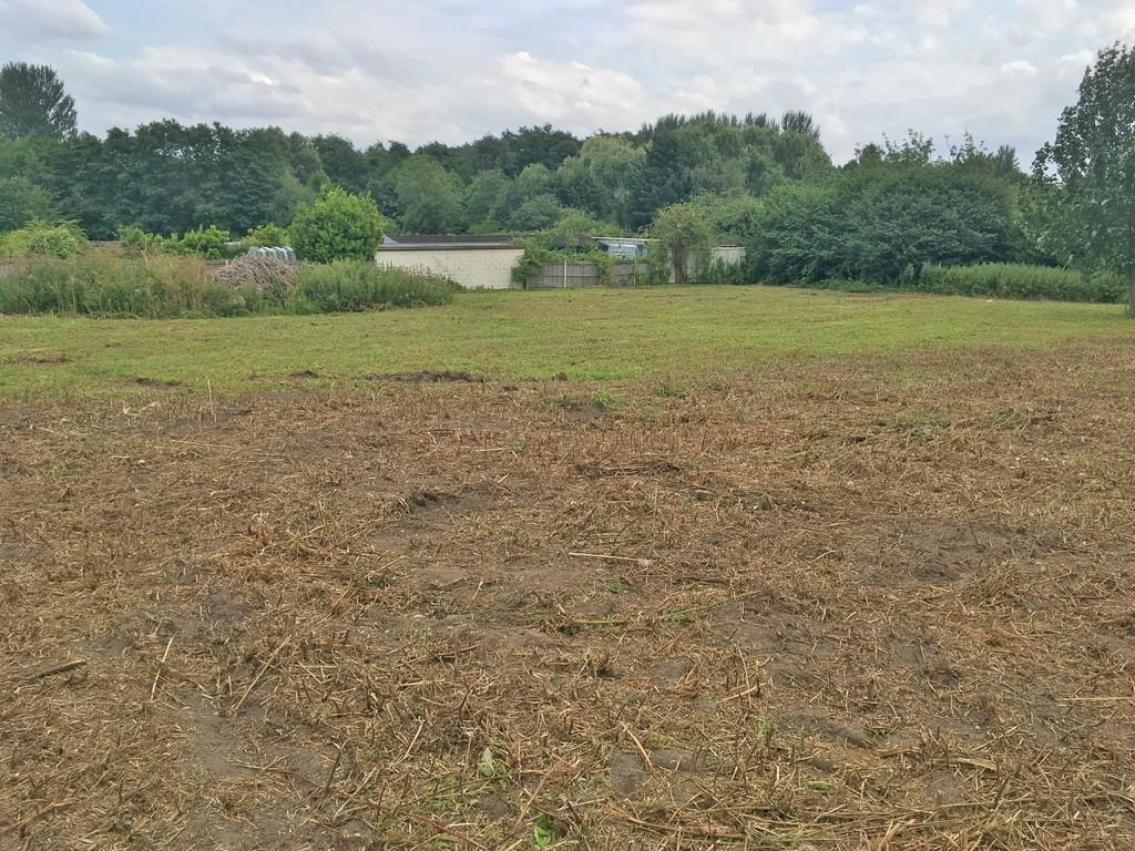 Land Commercial for sale in Ipswich Road, Newton Flotman