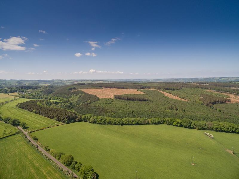 Land Commercial for sale in Dipton Wood, Hexham, Northumberland