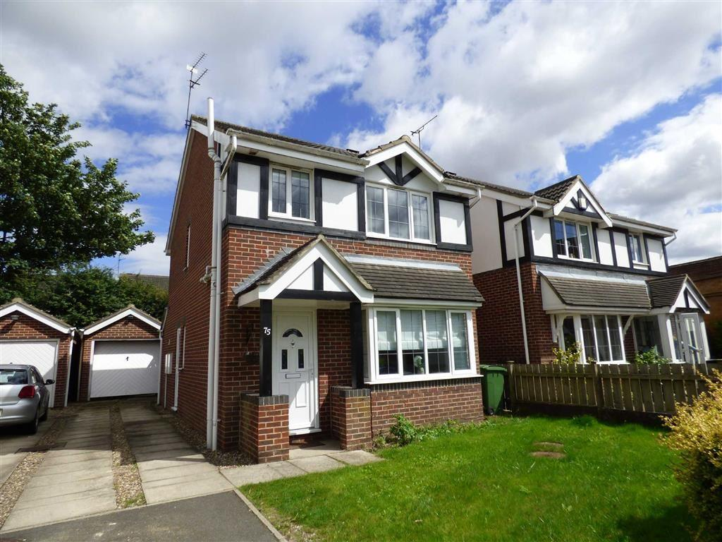 3 Bedrooms Detached House for sale in Centurion Way, Brough