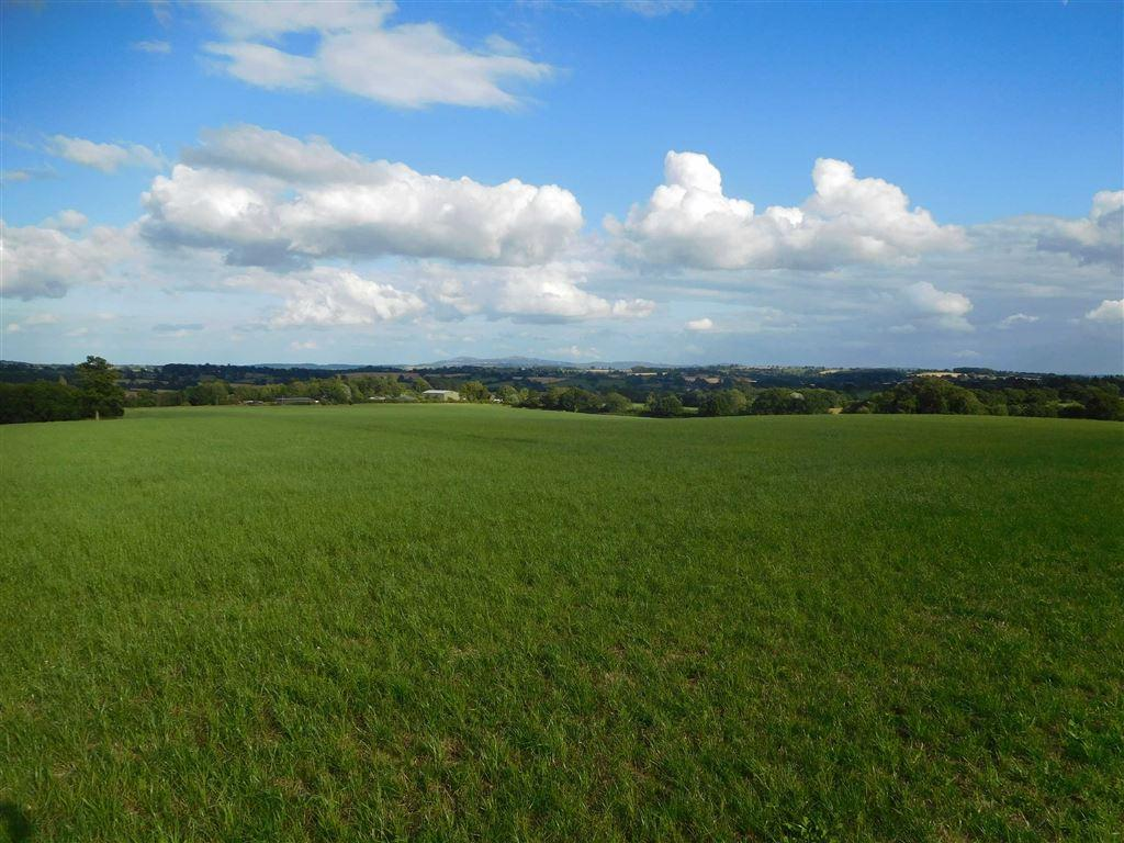 6 Bedrooms Farm Land Commercial for sale in Bromyard