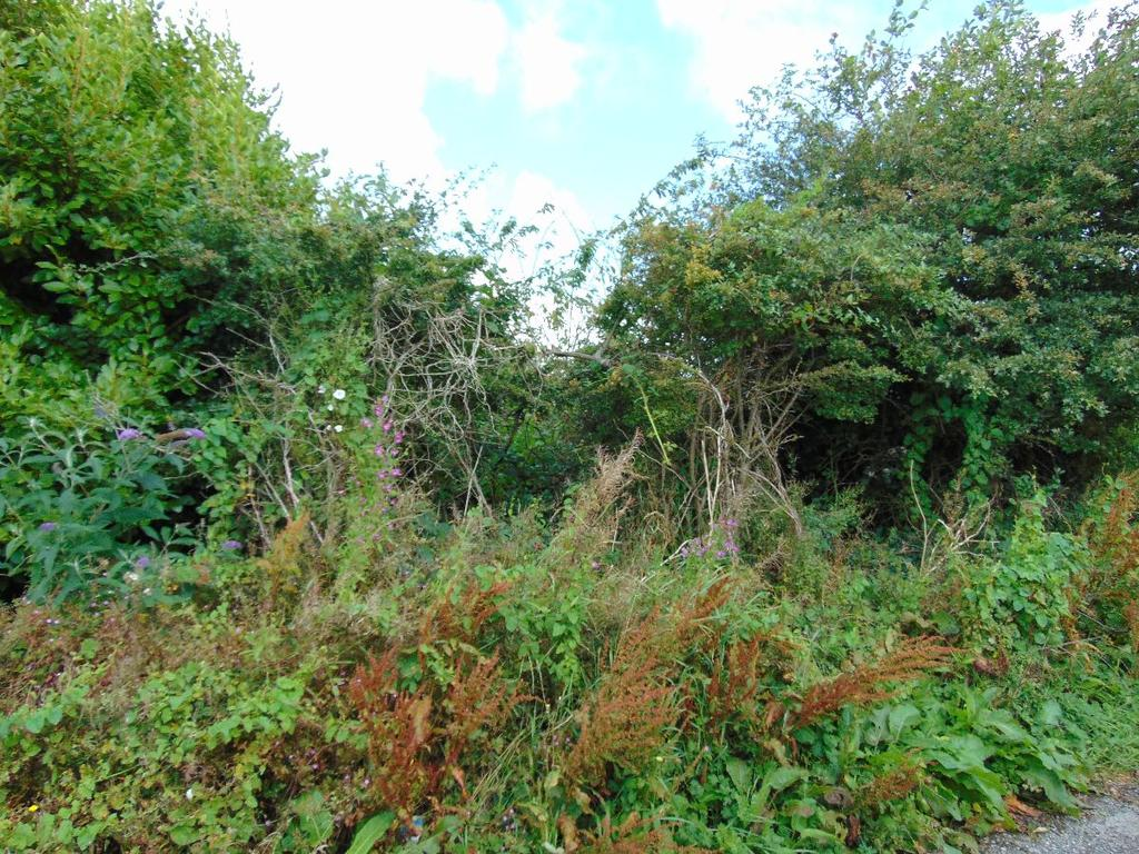 1 Bedroom Land Commercial for sale in Bleach Green Farm, Plot of Land, Off Victoria Road, Whitehaven, Cumbria, CA28 6JF