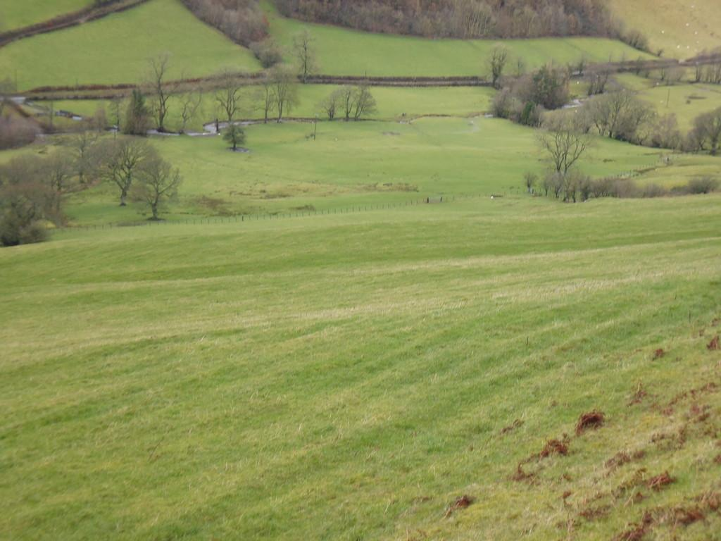 Land Commercial for sale in Llanerfyl, Welshpool