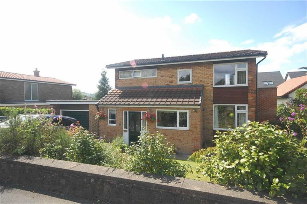 4 Bedrooms Detached House for sale in Dunbottle Lane, Mirfield, WF14