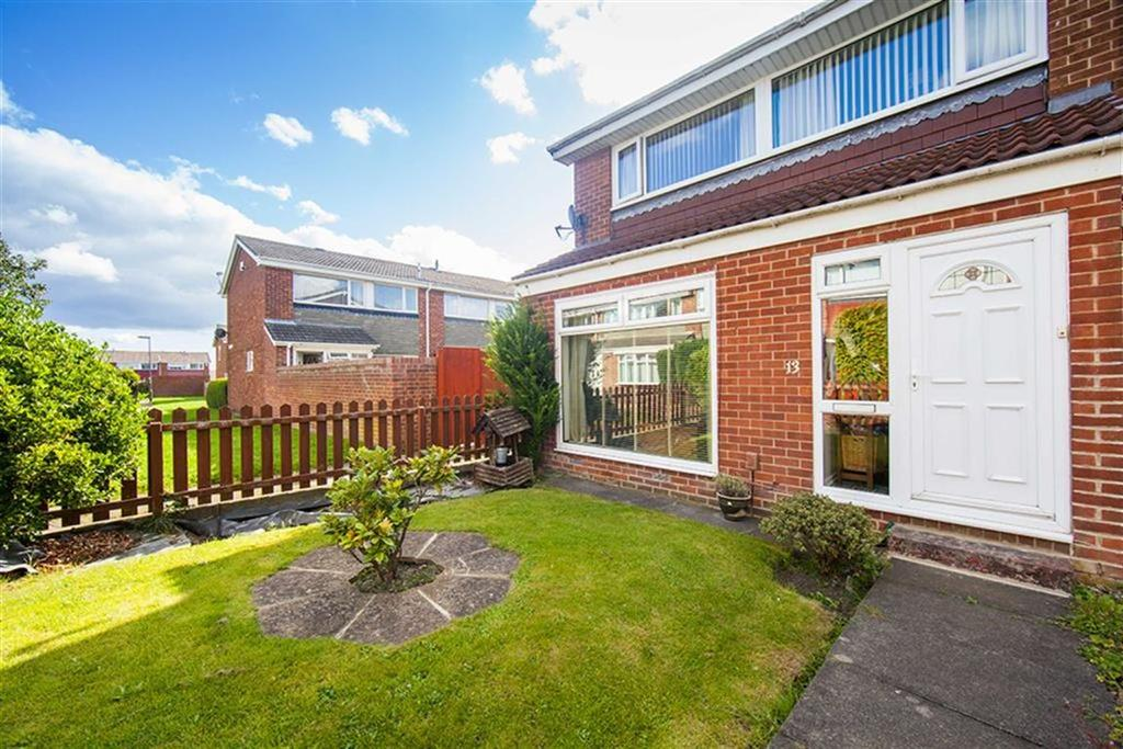3 Bedrooms Terraced House for sale in Birch Grove, Wallsend, Tyne And Wear, NE28