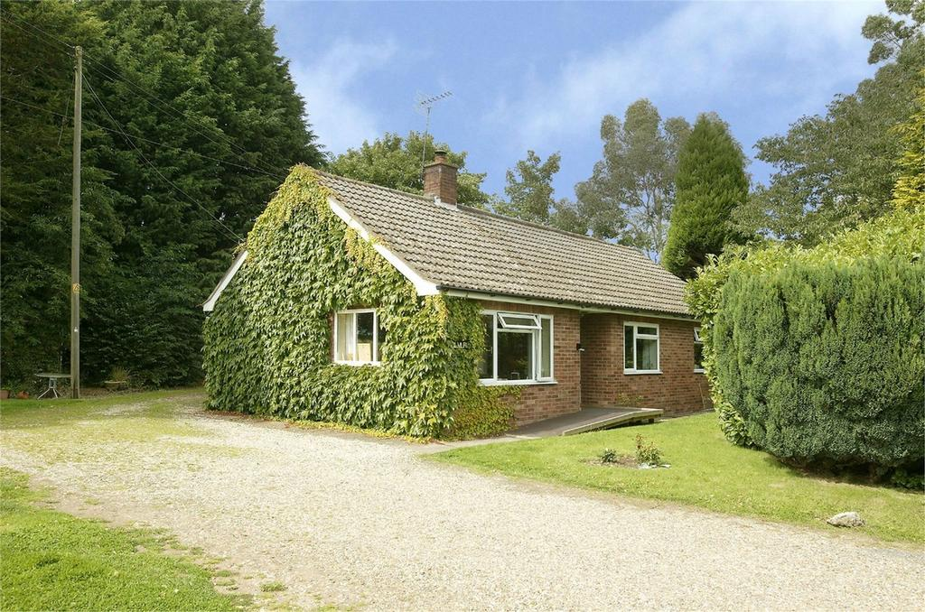4 Bedrooms Chalet House for sale in Hulver Street, Wendling, Norfolk