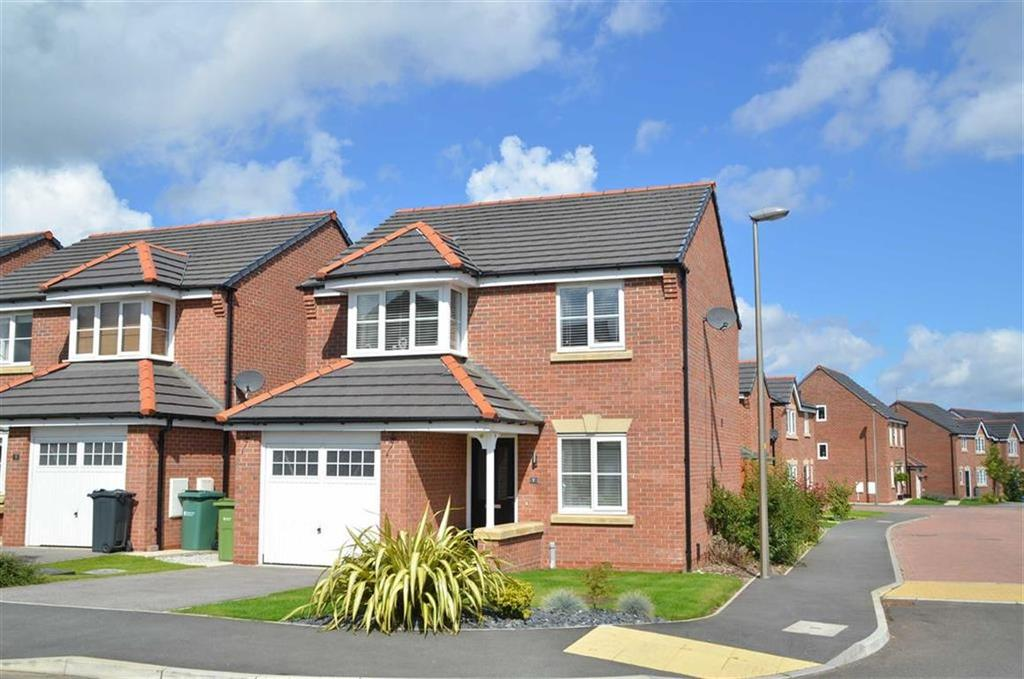 3 Bedrooms Detached House for sale in Tryfan Way, CH66