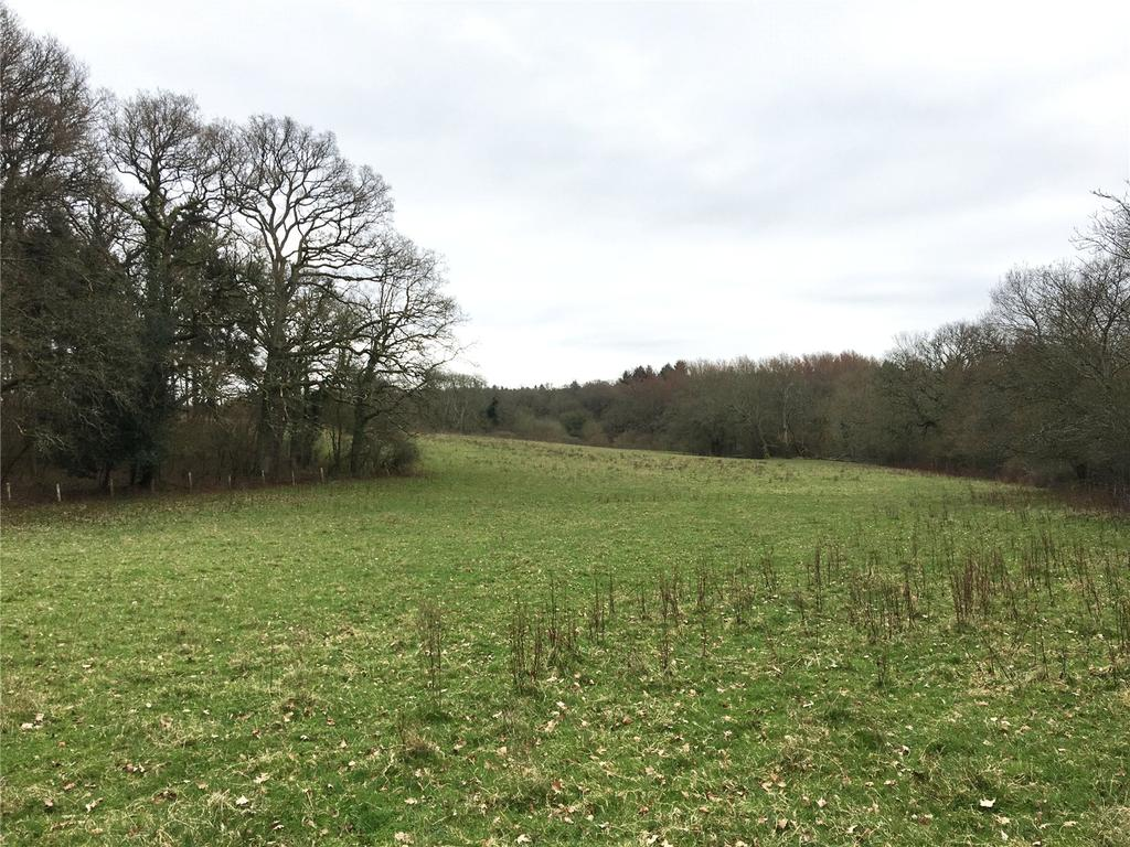 Plot Commercial for sale in Spearywell, Mottisfont, Romsey, Hampshire, SO51
