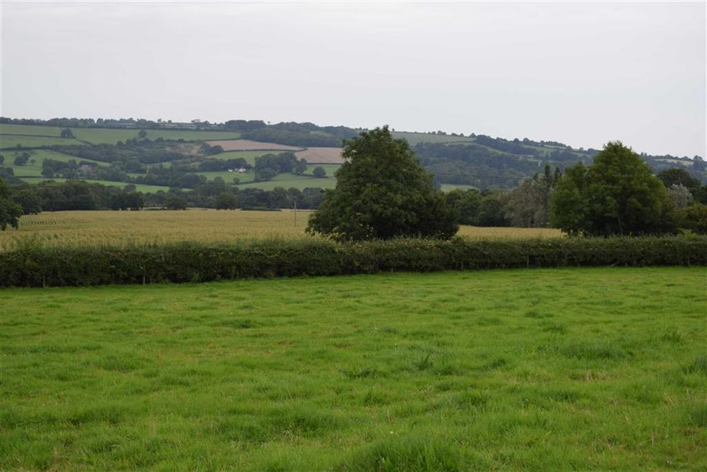 Land Commercial for sale in Laymore, Thorncombe, Somerset, TA20