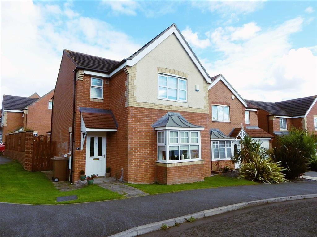 3 Bedrooms Detached House for sale in Dilston Grange, Willington Quay, Wallsend, NE28