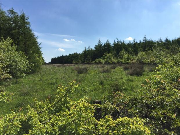 House for sale in Drumtassie, Armadale, West Lothian