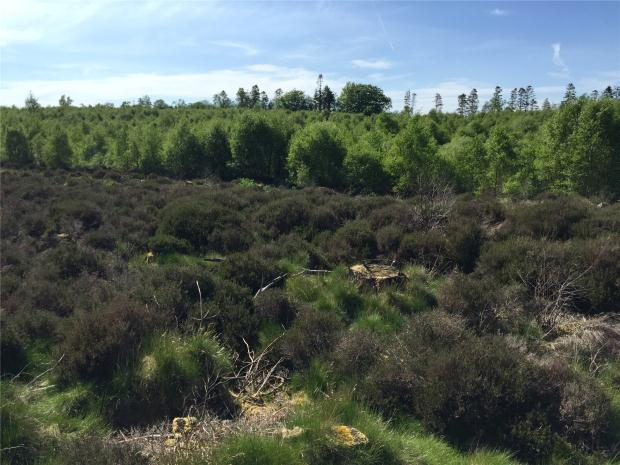 Land Commercial for sale in Campwood, Lanark, South Lanarkshire