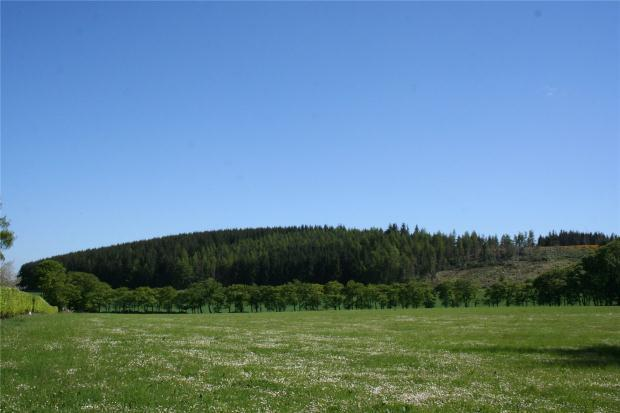 Land Commercial for sale in Wester Leochel Wood, Alford, Aberdeenshire