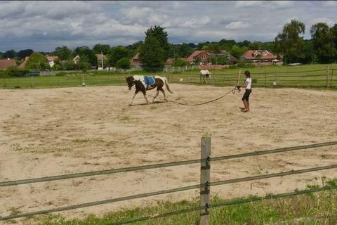 3 bedroom equestrian facility to rent - Maidstone Road, Sidcup