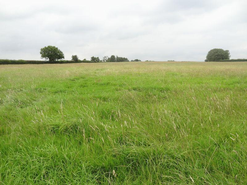 Farm Land Commercial for sale in 25.94 Acres of Agricultural Land, Blackford Road, Blackford near Mark