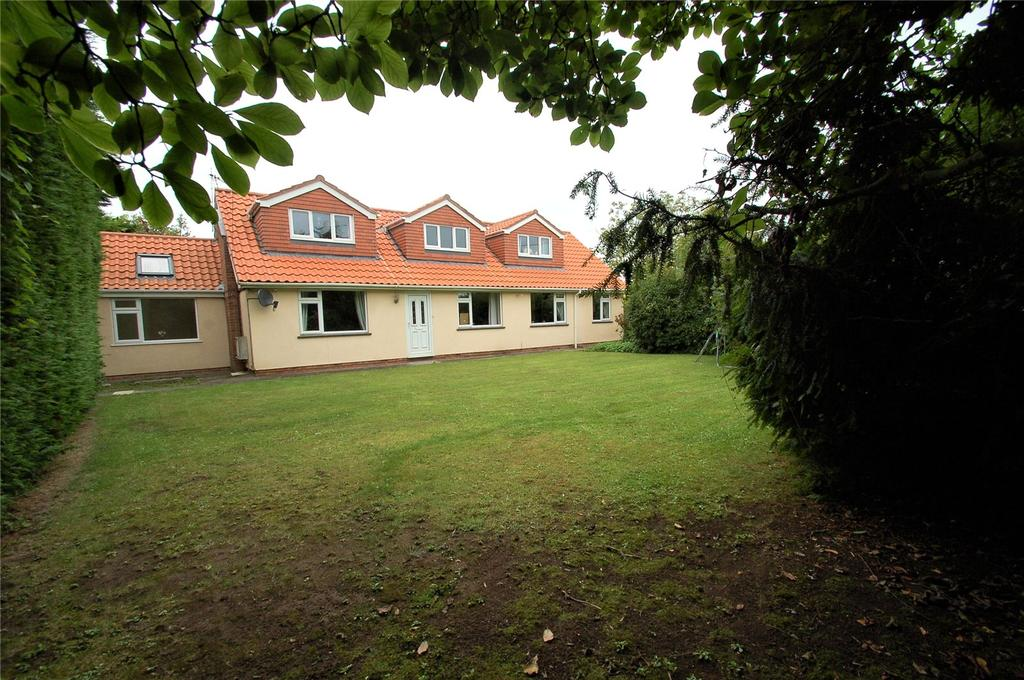 4 Bedrooms Detached Bungalow for sale in River Lane, Upper Dunwear, Bridgwater, Somerset, TA7