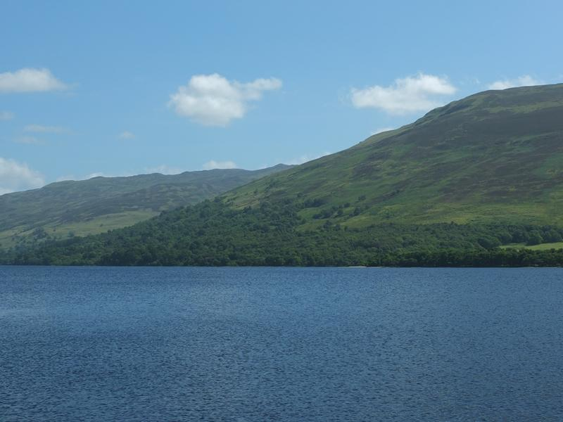 Land Commercial for sale in Loch Earn Wood, By Lochearnhead, Stirlingshire
