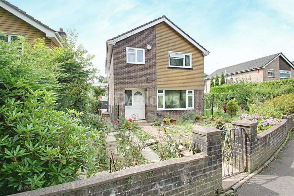 4 Bedrooms Detached House for sale in Mathew Walk, Danescourt