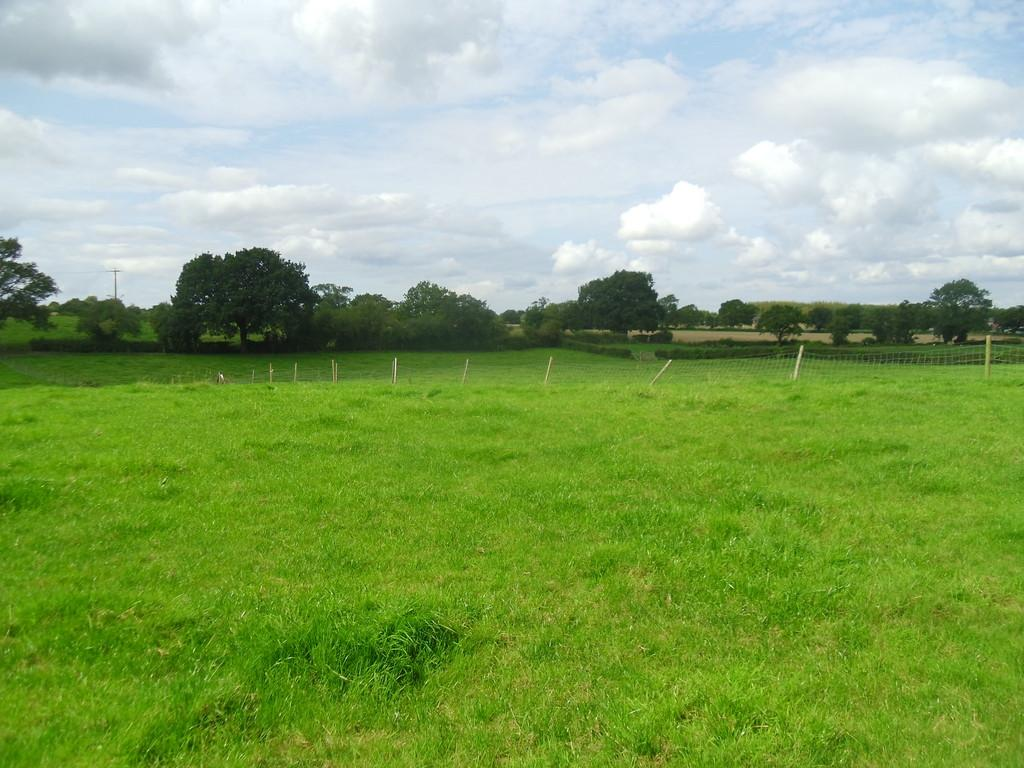 Land Commercial for sale in Land On Beech Lane, Kingsley