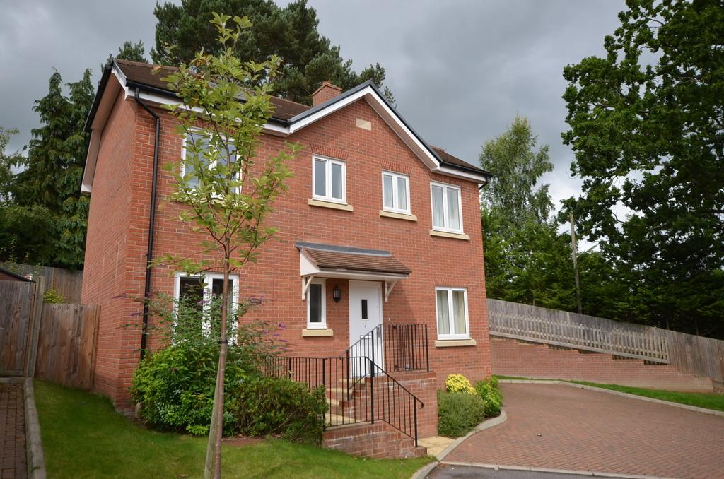 3 Bedrooms Detached House for sale in Blackthorn Close, Lower Bourne