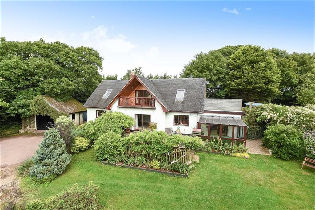 4 Bedrooms Detached House for sale in Wellsprings Lane, Sampford Courtenay, Okehampton, Devon, EX20