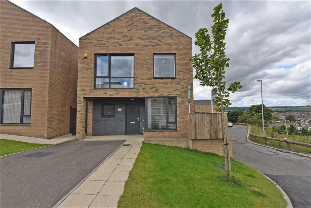 3 Bedrooms Detached House for sale in Birtley