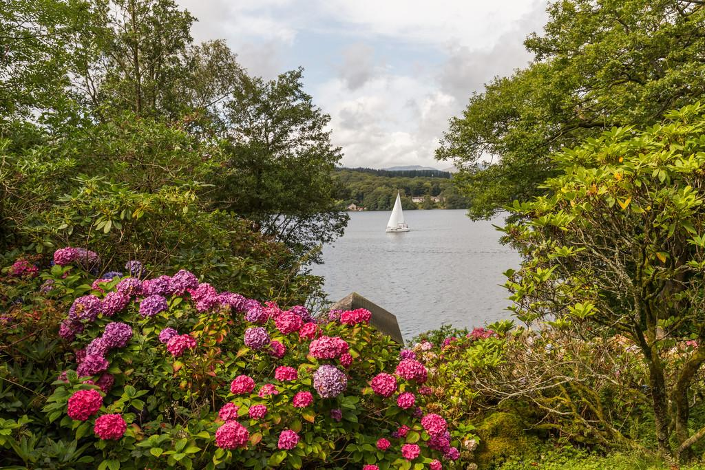 Garden and Lake Windermere