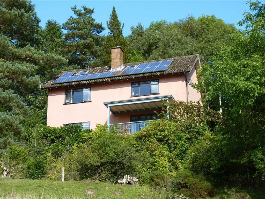 3 Bedrooms Detached House for sale in NR KNIGHTON, Nr Knighton, Powys