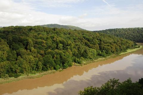 Land for sale - Piercefield Wood, Chepstow, Monmouthshire NP16