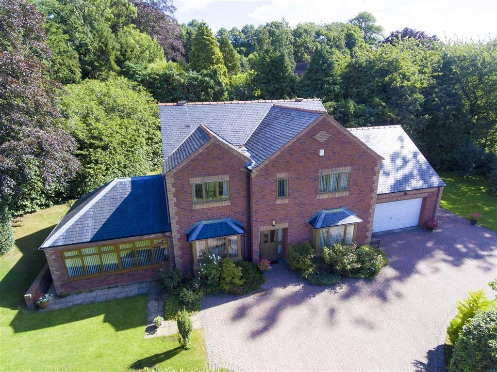 4 Bedrooms Detached House for sale in Trelydan, Welshpool, SY21