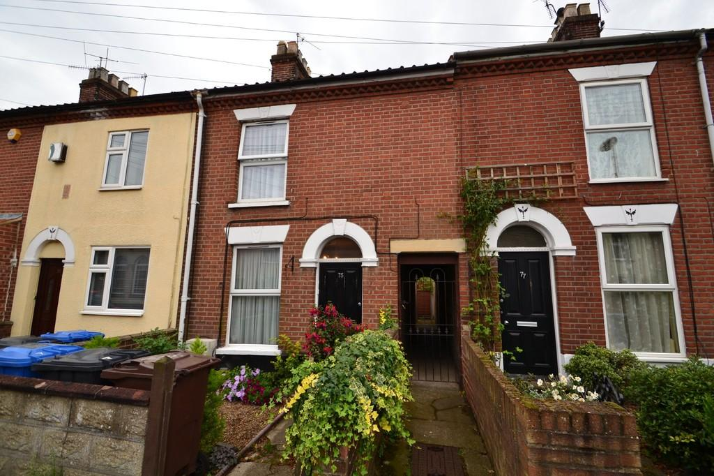 3 Bedrooms Terraced House for sale in Armes Sreet, Norwich