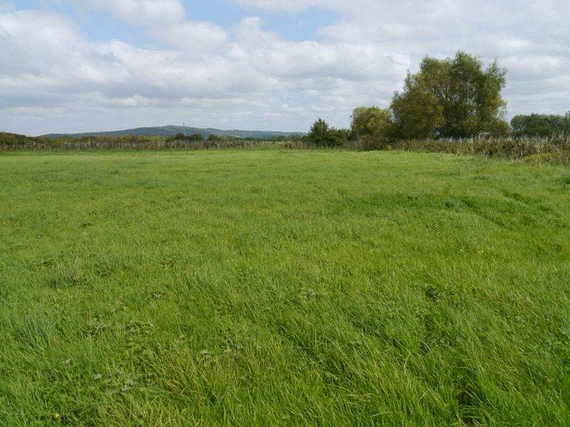 Land Commercial for sale in Auction of 3.74 acres land at Puxton Moor Lane, Weston-Super-Mare, North Somerset