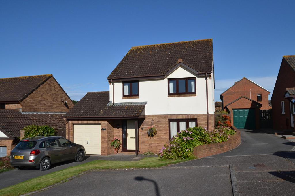 4 Bedrooms Detached House for sale in Home Meadow, Minehead